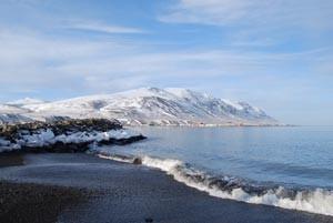 Aðalfundur félagsins þriðjudaginn 25. maí